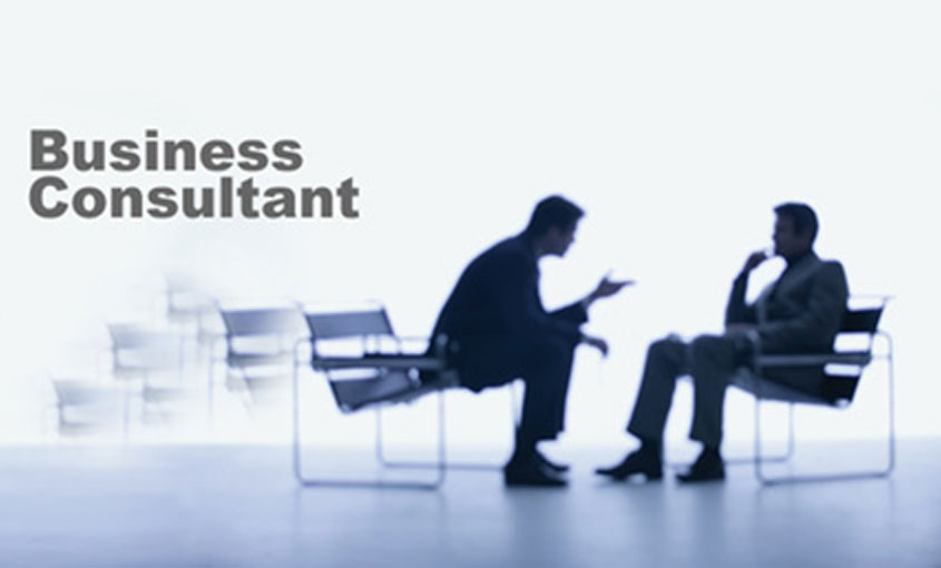 small business strategy consultant